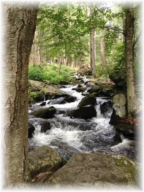 Surging brook in Bushkill Falls, PA 7/21/15
