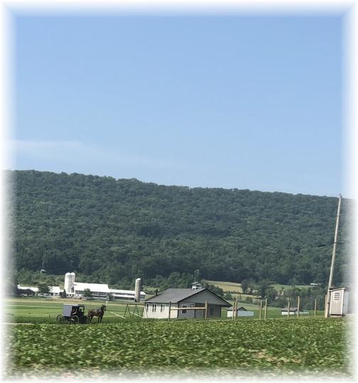 Centre County, PA farm 7/1/18