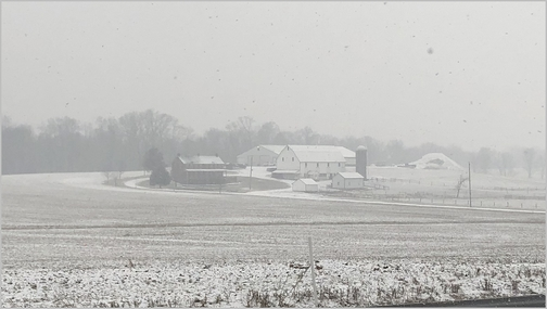 Dauphin County farm in snow 1/29/19 (Click to enlarge)