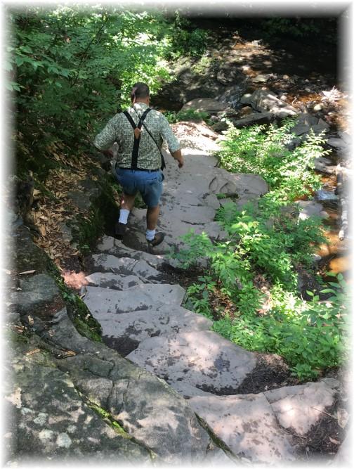 Falls Trail, Ricketts Glen State Park 6/28/17