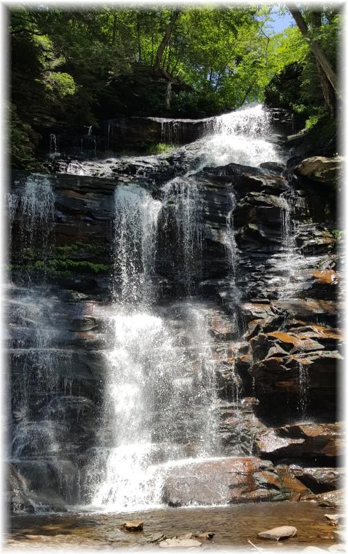 Ganoga Falls, Ricketts Glen State Park 6/28/17