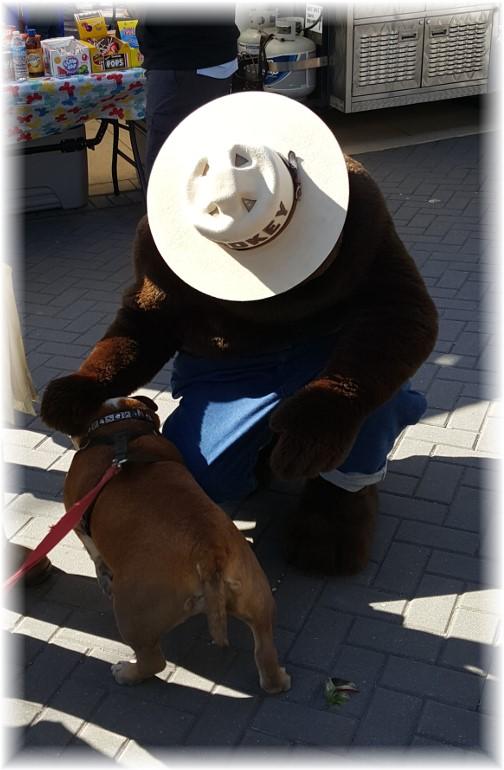 Jim Thorpe, PA Smokey the Bear petting dog 4/23/16