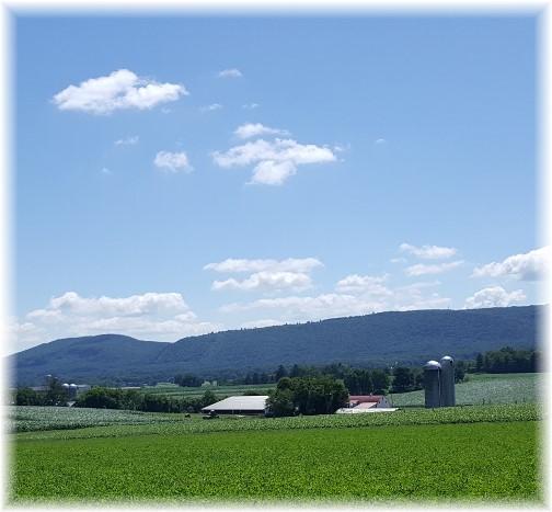 Lebanon Valley farm 7/9/17