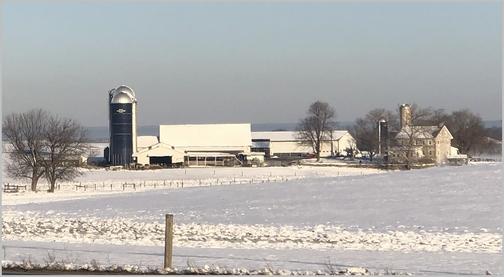 Lebanon County farm, PA 3/5/19 (Click to enlarge)