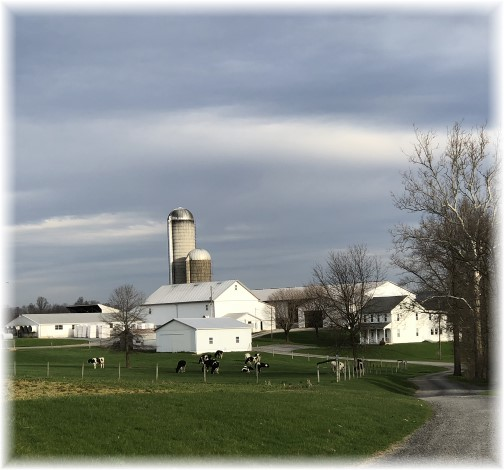 Lebanon County farm 4/24/18 (Click to enlarge)