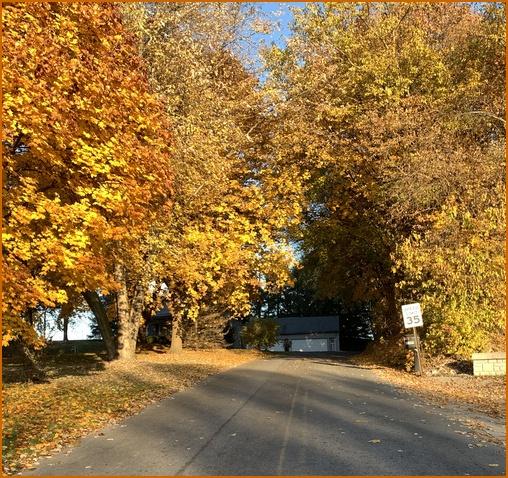 Lebanon County foliage
