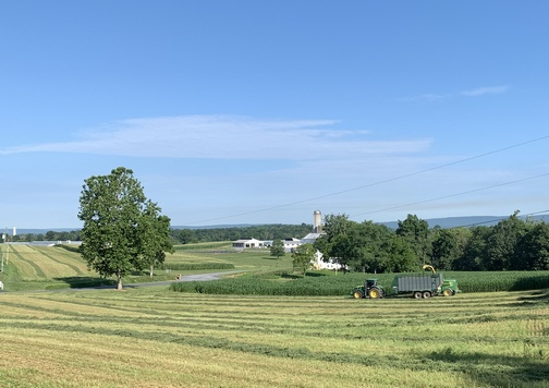 Hay harvest, Lebanon County PA