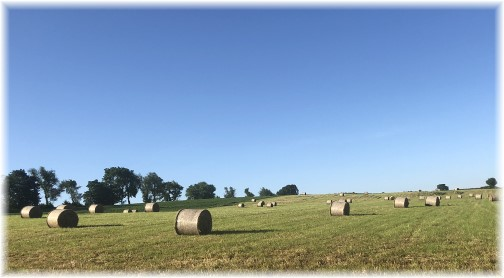 Lebanon County hay field 6/12/18