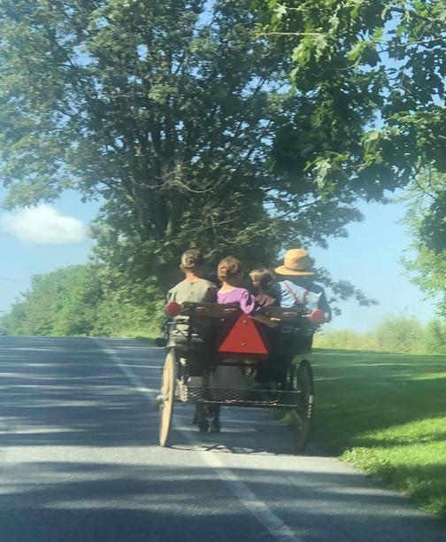 Children on horse-drawn cart in Lebanon County