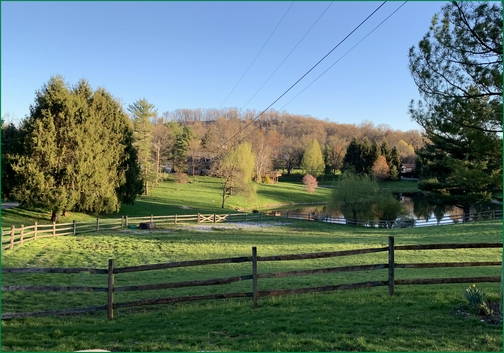 Lebanon County pond 4/16/19 (Click to enlarge)