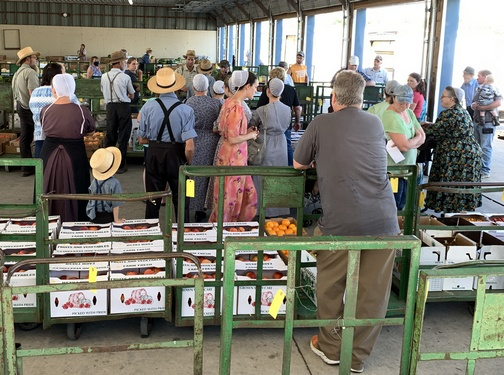 Lebanon Produce Auction