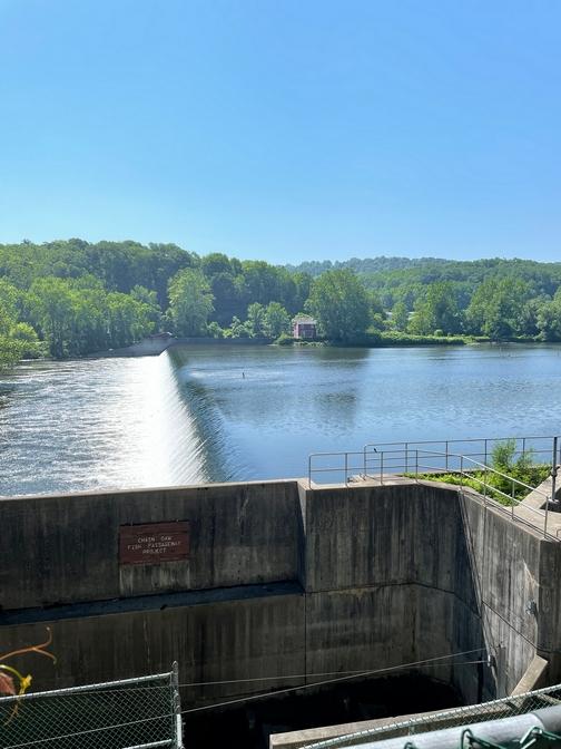 Chain dam on Lehigh River