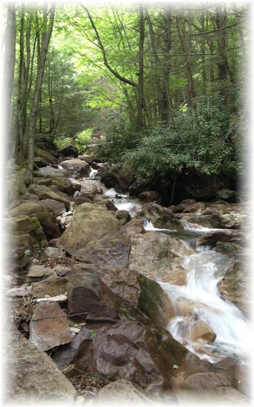 Lehigh River Gorge gushing brook, Poconos, PA 5/30/15