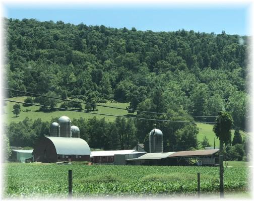 Mason Farm, Cameron County, PA 7/1/18 (Click to enlarge)
