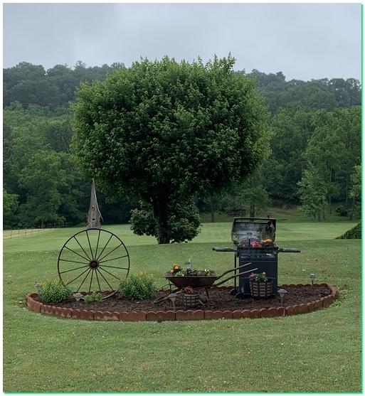 Northumberland County lawn scene 6/10/19