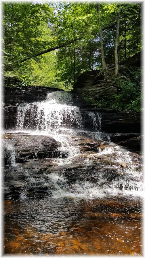 Onondaga Falls, Ricketts Glen State Park 6/28/17