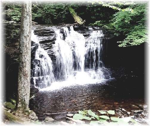 Ricketts Glen State Park 6/28/17