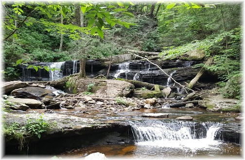 Waterfall at Rickett's Glen 6/28/17 (Click to enlarge)