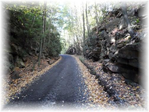 Snowshoe ATV trail