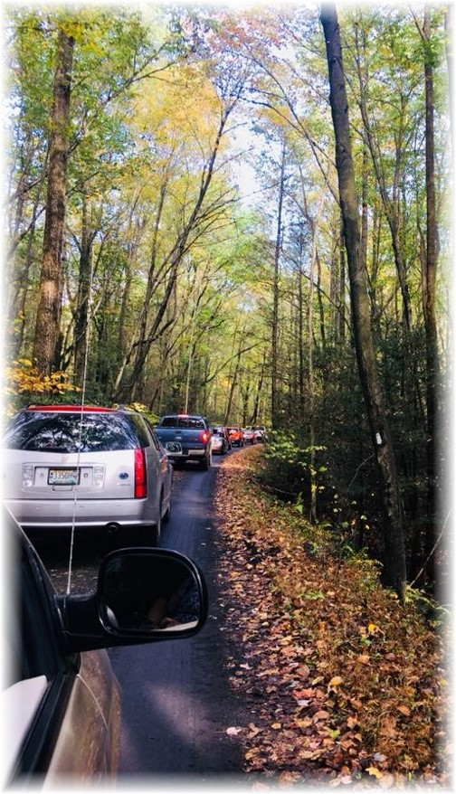 Stony Valley rail grade traffic 10/15/17
