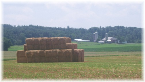 Straw bales on Lebanon County farm