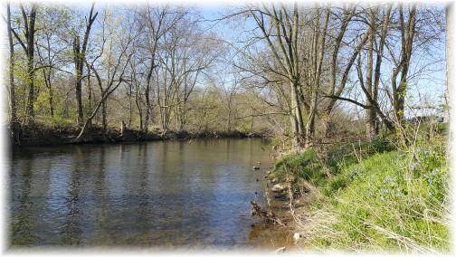 Swatara Creek 4/18/17