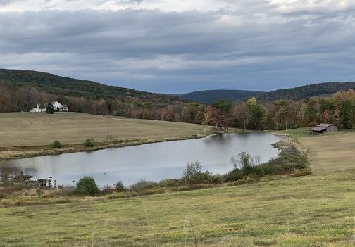 Tioga County view