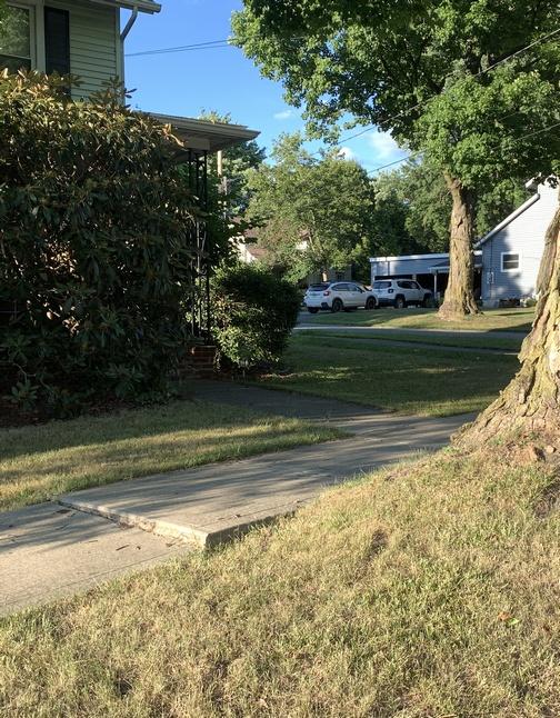 Sidewalk crack in Wellsboro, PA