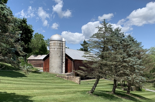 York County barn 6/22/19 (Click to enlarge)