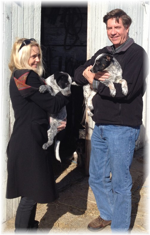Bob and Laura Cook with pups in Lancaster County 11/8/14