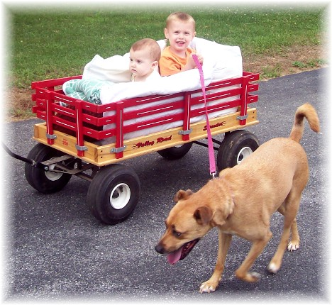 David and Seth in wagon