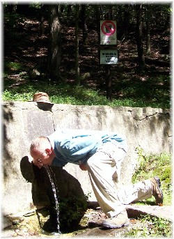 Nelson drinking from mountain spring