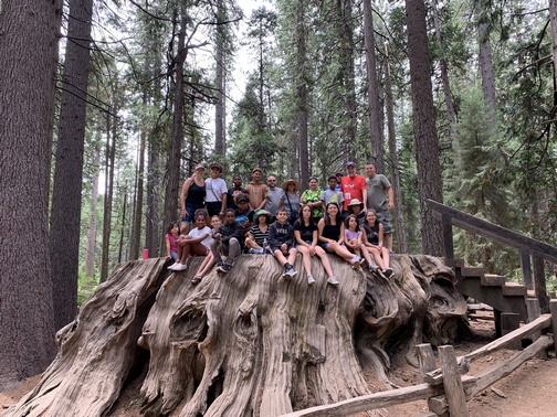 Matangelo family on Redwood stump
