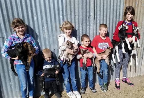 Oberholzer children with goats