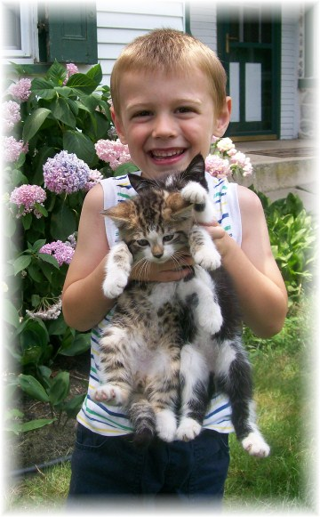 David with kittens