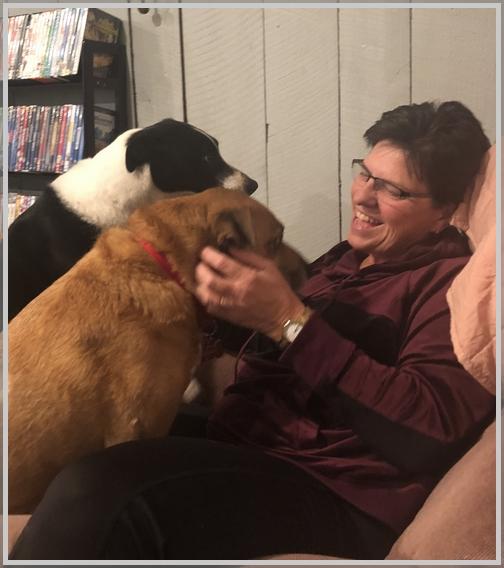 Happy pets 11/6/18