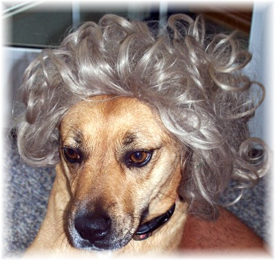 Roxie with wig