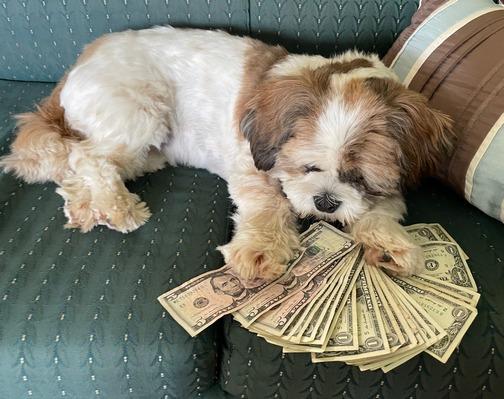 Sadie with Ester's tip money
