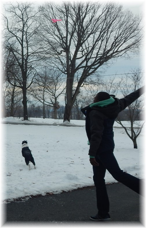 Frisbee in the snow 2/1/15