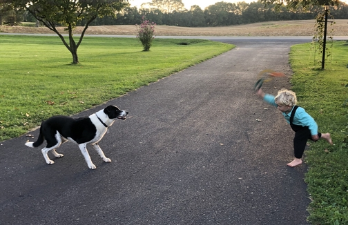 Ring toss with Mollie  9/15/19
