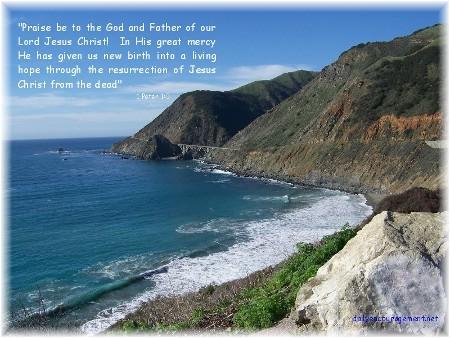 California coastline (photo by Nancy Martin) Click to enlarge