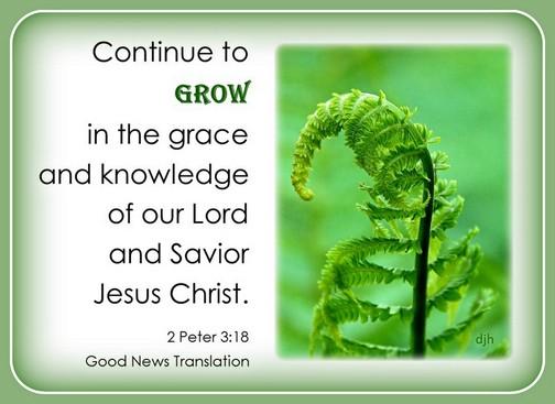 1 Peter 3:18 (Doris High)