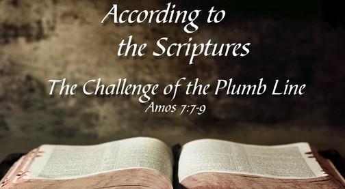 Amos 7:7-9