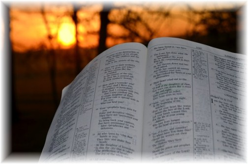 Bible in morning (photo by Doris High)