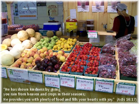 Produce stand at Bird in Hand farm market (Pennsylvania)