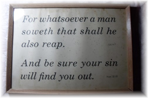 Galatians 6:7 Kember print
