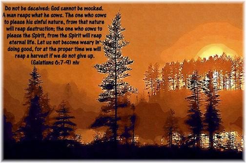 Galatians 6:7-9