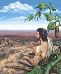 Jonah under vine