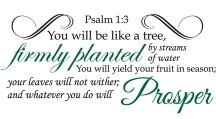Psalm 1:3