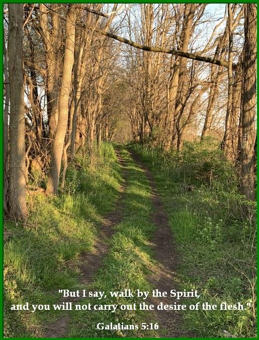 Walk by the Spirit Galatians 5:16